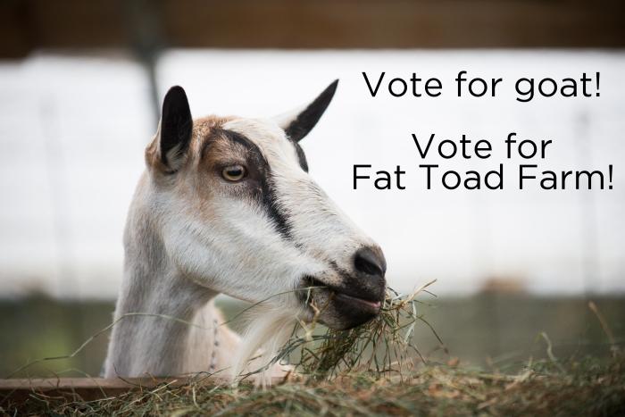 Vote for goat!