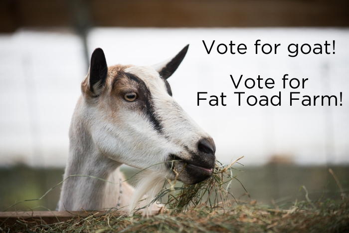 Vote for goat!