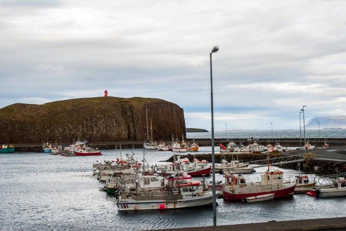 Icelandfarms-3