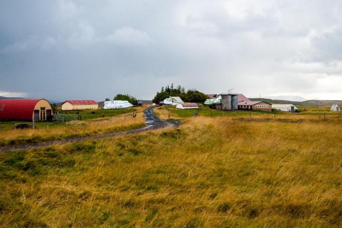 Icelandfarms-4